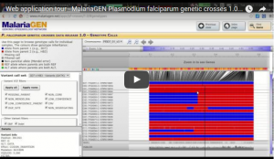Screenshot of the <i>P. falciparum</i> genetic crosses application below.