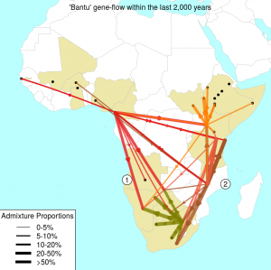 Map of admixture events - Arrows show inferred gene-flow events between Bantu speaking groups.