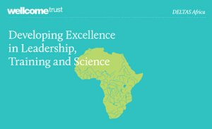 Developing Excellence in Leadership, Training and Science. Wellcome Trust.