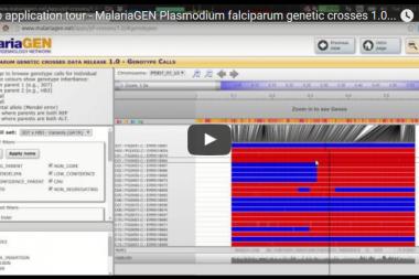 Screenshot of the <i>P. falciparum</i> genetic crosses application below.