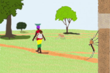 Walking with malaria. Illustration by Will Hamilton.