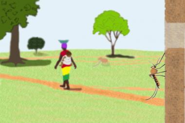 Walking with malaria. Illustration by Will Hamilton.