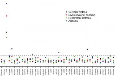 Figure 2. Severe malaria phenotypes. Manjurano et al, 2012.