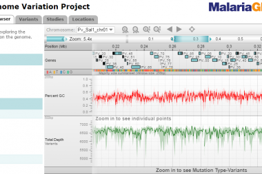 Screen capture of <i>P. vivax</i> Genome Variation Project web application.