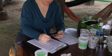 Brandy St. Laurent is processing mosquito collections in Pursat Province, Cambodia. Photo credit: Kolthida Oy.