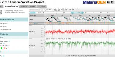 Screen capture of <i>P. vivax</i> Genome Variation Project web application.